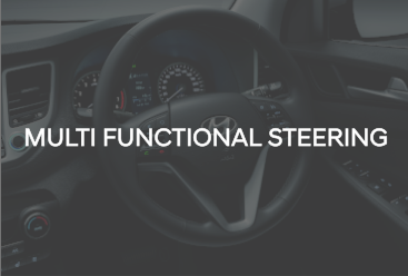 Multi funtional steering wheel